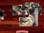 Funny Dogs Puzzle Walkthrough