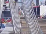 Puppy Really Loves Amusement Park Slides