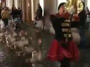 Parading Around Town With Geese!