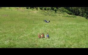 Peter Rabbit 2: The Runaway Trailer 2