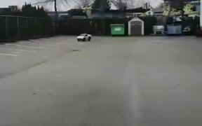 Tiny Driver, Tiny Cybertruck!
