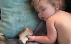 Doggo Casually Eats Kid's Snack