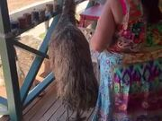 Who Knew Emus Like Eating Chips!