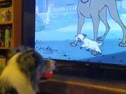 Dog Just Enjoying A Scooby Doo Movie!