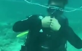 How To Have Fun While Scuba Diving!