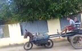 When You Love The Horse, But Horse Is Expensive!