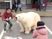 Amazing Street Art Of A Polar Bear!