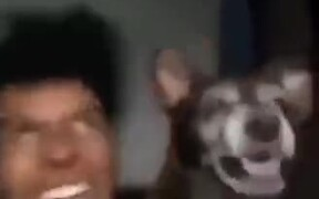 When Your Dog As The Same Disorder As You