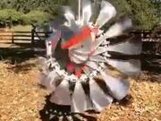 Amazing Kinetic Wind Art Sculpture