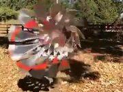 Amazing Kinetic Wind Art Sculpture