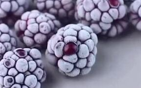 Defrosting Berries Time Lapse Clip