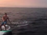 Surfer And A Pod Of Dolphins Swim Together!