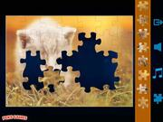 Jigsaw Puzzles Classic Walkthrough