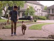 Think Like a Dog Trailer