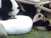 Savage Panda Parent
