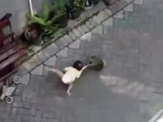 Unexpected Monkey Attack