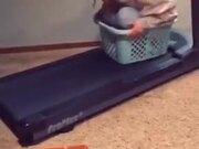 A Fun Treadmill Experiment
