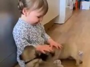 The Combination Of A Human Baby And Puppies