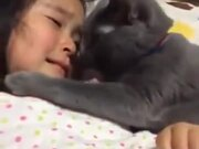 Kitty Comforting Little Crying Girl