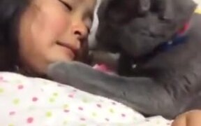 Kitty Comforting Little Crying Girl
