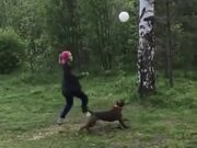 Dog And Owner Having Fun With A Balloon