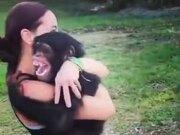 A Reason To Raise A Chimp