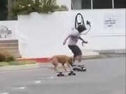 Man Riding A Skateboard With Dog