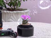 360 Motion Video