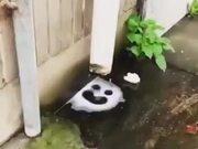 Auto-Created Smiley Face