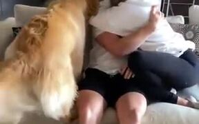 Dog Wants More Attention Than A Girlfriend