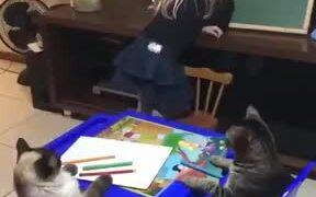 Little Girl Homeschooling Cats