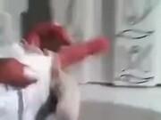 Hand Puppet Ninjas Fighting
