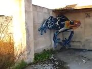 3D Graffiti Art Of A Giant Frog