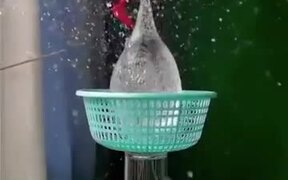 The Amazing Slow-Motion View