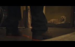 Synchronic Trailer