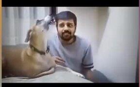 Dog Loves Vocal Training