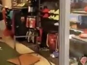 Cow Destroying A Shoe Store