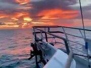 A Filmy, Magical Sunset
