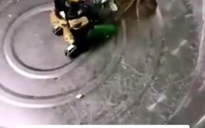 Deathmatch Between Robot And A Crab