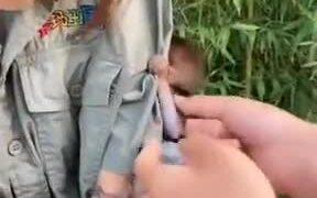 Baby Monkey Wants Human Mother