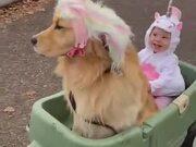 Little Girl Living Her Unicorn Dream