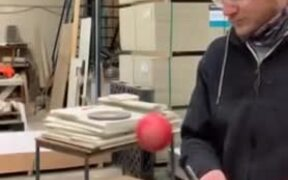 Coolest Science Experiment With An Apple