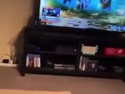 Dog Scared By TV