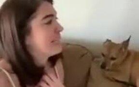 Singing Dog Interrupts Mother
