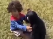 Human Baby And Ape Baby Sharing Some Love