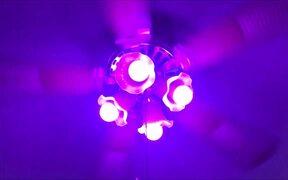 Phone control Smart LED Bulb