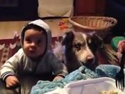 Dog Saying Mama!