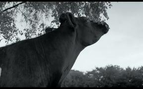 Gunda Official Trailer