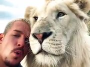 When A Lion Is Your Friend