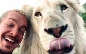 When A Lion Is Your Friend